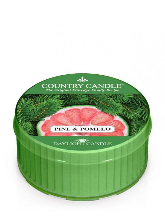 Country Candle - Pine & Pomelo - Daylight (35g)