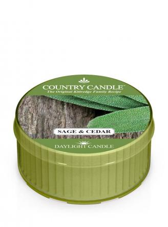 Country Candle  Sage and Cedar  Daylight (35g)