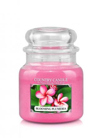 Country Candle  Blooming Plumeria   Średni słoik (453g) 2 knoty